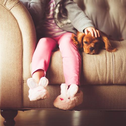 Das Haustier ist für uns ein unmittelbarer Lebenspartner.